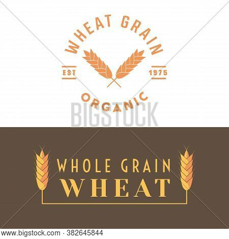 Wheat Label For Cereal Grain And Other Products Like Flour, Semolina, Malt, Bulgur Groats. Organic F