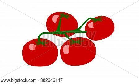 Flat Tomato Branch Isolated On White Background.tomato Icon.