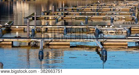 Floating Docks On A Calm, Sunny Day.