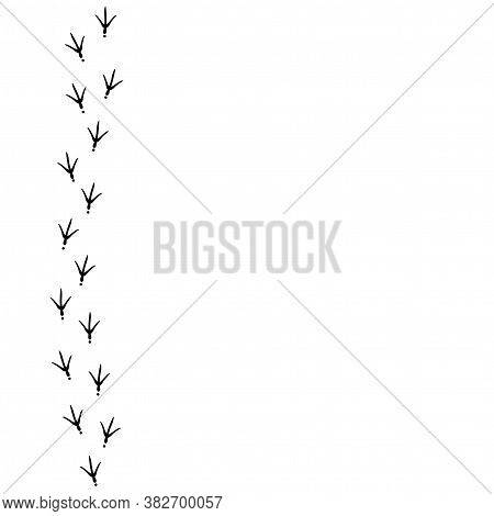 Vector Background With Bird Trail On The Right Side. Black Bird Footprints Track