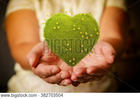 Woman's hands holding green heart with yellow flowers, natural and ecological life style concept, gardening in pure, healthy environment