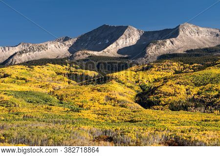 West Beckwith Mountain In The Late Afternoon Light Of Autumn Above The Golden Aspen Trees.