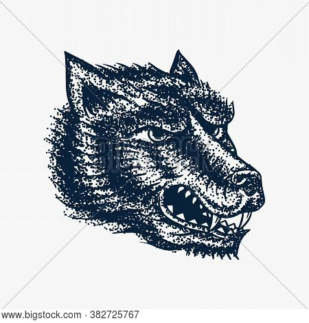 Screaming Mad Wolf For Tattoo Or Label. Roaring Beast. Animal In Retro Style. Engraved Hand Drawn Li