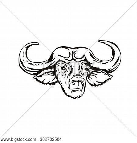 Retro Woodcut Style Illustration Head Of An African Buffalo Or Cape Buffalo Syncerus Caffer, A Large