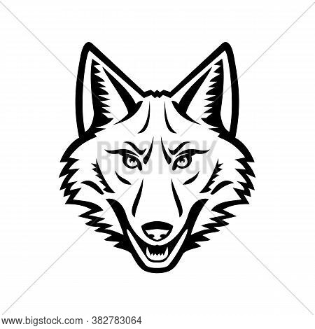 Black And White Mascot Illustration Of Head Of A Coyote Or Canis Latrans, A Canine Native To North A
