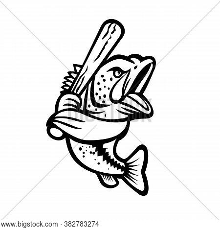 Black And White Mascot Illustration Of A Largemouth Bass, Bucketmouth Or Bigmouth Bass With Baseball