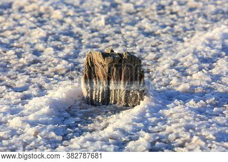 old dry wooden pillar in salt on lake