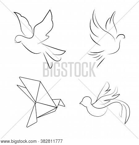 Pigeons In Different Styles. Cute Doves.black And White Pigeons