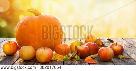 Autumn Thanksgiving Day Background. Orange Pumpkin And Red Apples On Wooden Table Over Bright Autumn