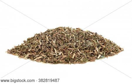Ladies bedstraw herb leaf used in herbal medicine to treat epilepsy, hysteria, spasms, loss of appetite, chest and lung infections and is also a diuretic, on white background. Galium Verum.