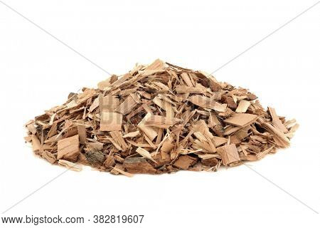 Poplar bark herb used in herbal medicine to treat  headaches, relieve pain, wounds, acne, sore joints, rheumatism, on white background. Populus alba.