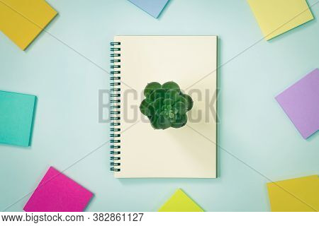 Spiral Notebook Or Spring Notebook In Unlined Type And Multi Color Sticky Note And Kalanchoe Or Succ