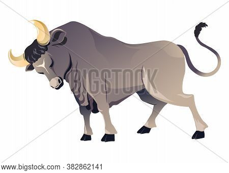 Angry Bull Animal With Horns, Wild Ox Vector