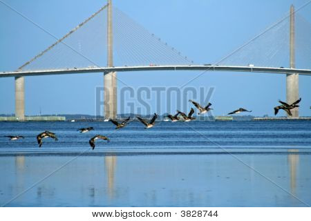 Sunshine Skyway in Tampa Bay. Saint Petersburg Florida. poster