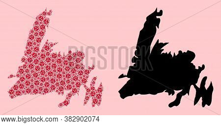 Vector Virus Mosaic And Solid Map Of Newfoundland Island. Map Of Newfoundland Island Vector Mosaic F