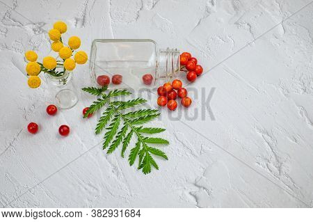 Glass Medicine Bottle For Pill Or Vitamin, Tanacetum Flower, Viburnum Berries And Green Leaf On Text