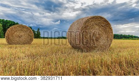 Swedish Landscape With Rolled Grass In The Fields That The Farmers Work With During The Month Of Jul