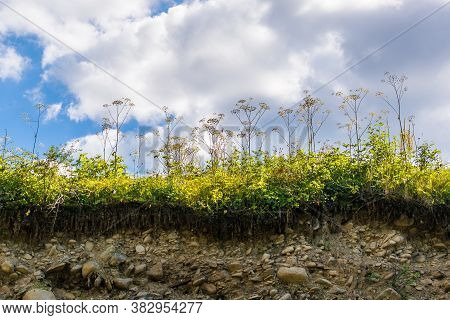 Landslide In The Village. Rocks And Ground Are Destroyed. Sunny Weather. Plants Die. Cataclysms. The