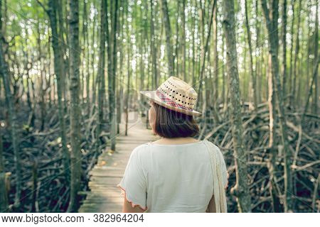 Asian Woman On Wooden Bridge In Mangrove Forest Ecotourism Thung Prong Thong, Rayong Province, Thail