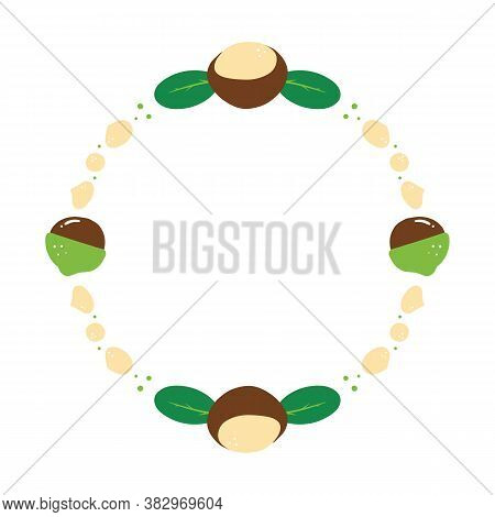 Cartoon Style Round Vector Frame, Card Template With Macadamia Nuts And Green Leaves For Healthy Foo