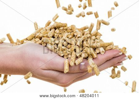 hand with pellets as an old natie energy. before white background