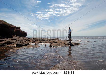 Beautiful Shoreline PEI