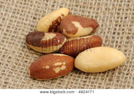 Brazil Nuts On Burlap