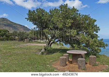 Chapman's Peak Drive. Place for repose.