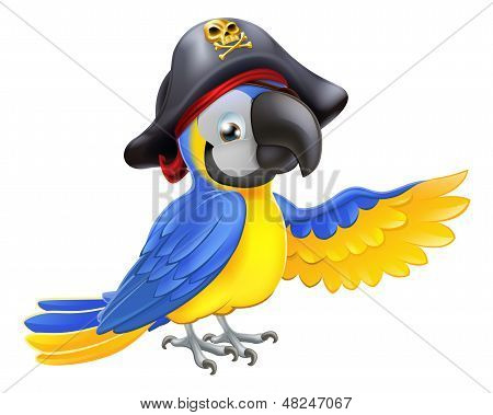 Pirate Parrot Illustration