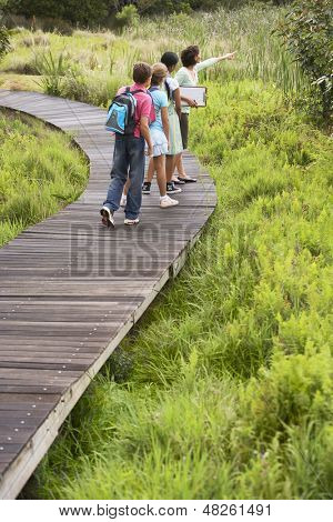 Teacher with children on nature field trip poster