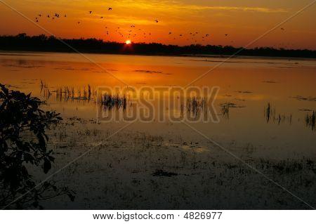 Dawn At Mamukala
