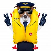 pilot captain dog wearing emergency life vest with peace fingers poster