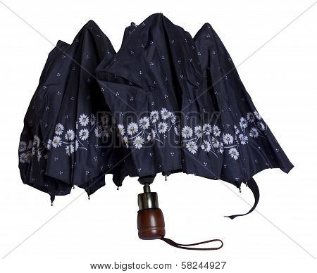 An Umbrella From The Rain