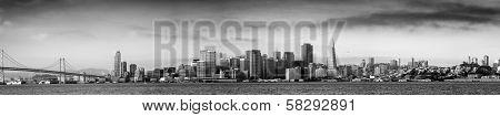 San Francisco Skylines