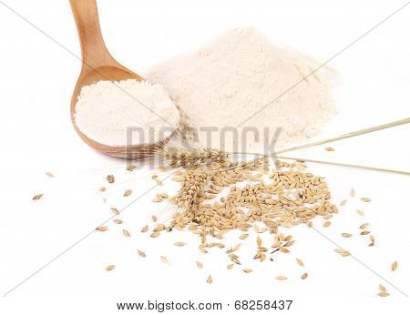 Wooden spoon with flour and wheat.