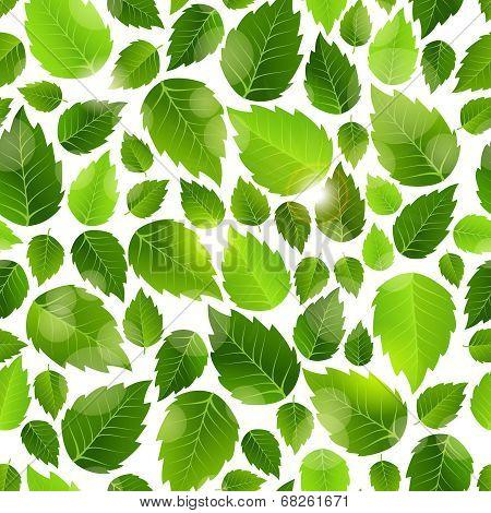 Fresh green leaves seamless background pattern
