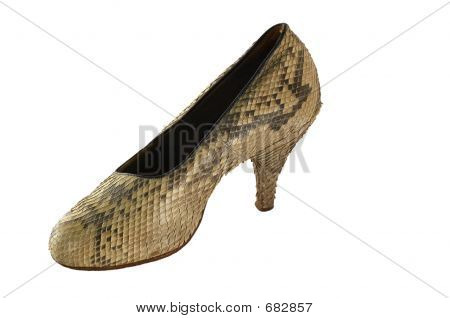 Snake Leather Female Footware