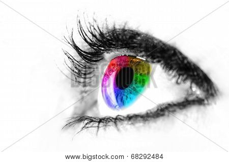 Eye Macro In High Key Black And White With Colourful Rainbow In Iris