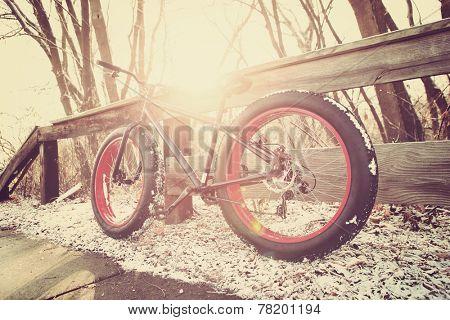 Winter biking. Fat tire bike. Instagram effect.