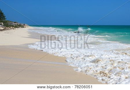Two pelicans flying over the Atlantic ocean. Cayo Guillermo. Cuba. poster
