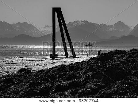 Lonely Three Legged Piling