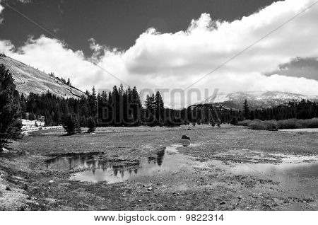 Tuolomne Meadows Monochrome