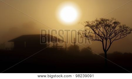 Foggy Morning Sunrise Rural Landscape