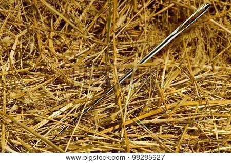 Needle In The Haystack