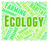 Ecology Word Indicating Earth Day And Environmental poster