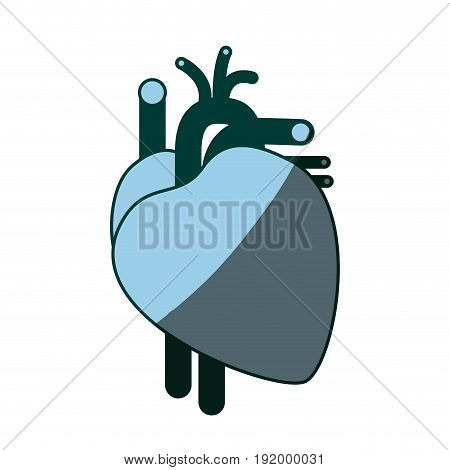 blue color shading silhouette heart system human body vector illustration