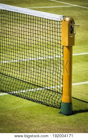 Tennis net on professional grass court in sunshine