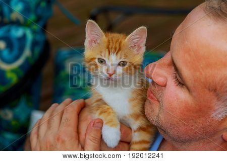Men's Hands And Little Kitty