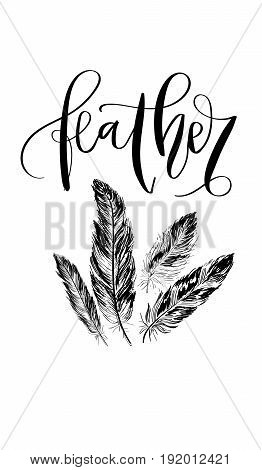 'Feather' - hand drawn lettering in modern calligraphy style. Boho art print with decorative feathers. Perfect for invitations, greeting cards, quotes and more.
