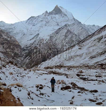 Single traveler in Himalayan mountains. Nepal, Annapurna region, Annapurna Base Camp track. Morning Mountain Landscape. Travel concept.